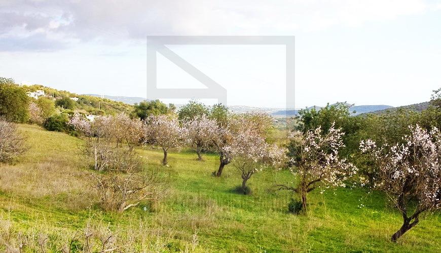 investment condominium villas Algarve