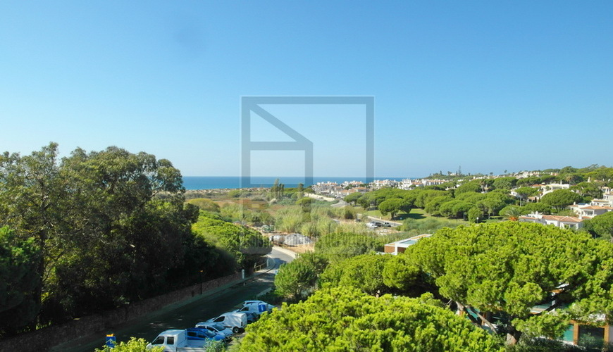 Algarve Real Estate