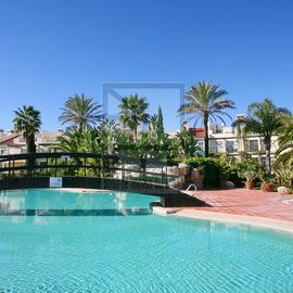 palmyra vila sol