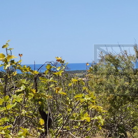 Plot with sea view meteres away from Vilamoura main entrance
